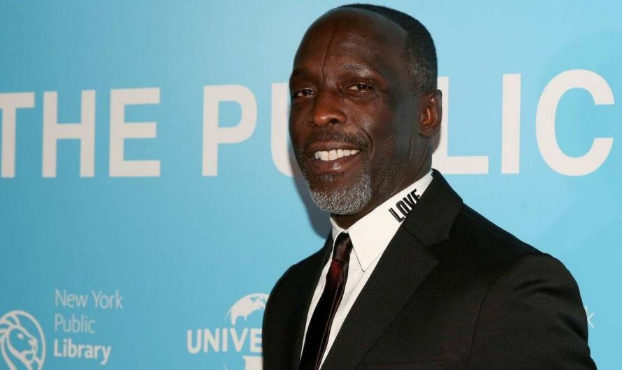 The Wire actor Michael K Williams died of drug overdose, says autopsy report